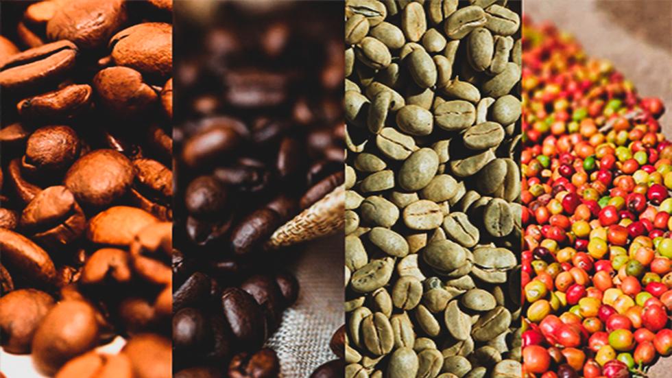 café de calidad premium